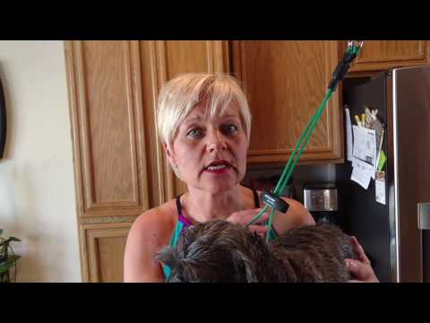 Natural Teeth Brushing for Dogs with Neem & Coconut Oil