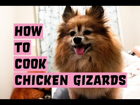 How To Cook Chicken Gizzards For Dogs